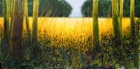 Le champ d'or, acrylique sur toile, 400X200cm. Disponible