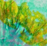 foret_2_acrylique_sur_papier_46X46