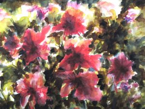 fleurs rouges aquarelle 31X41redim 800