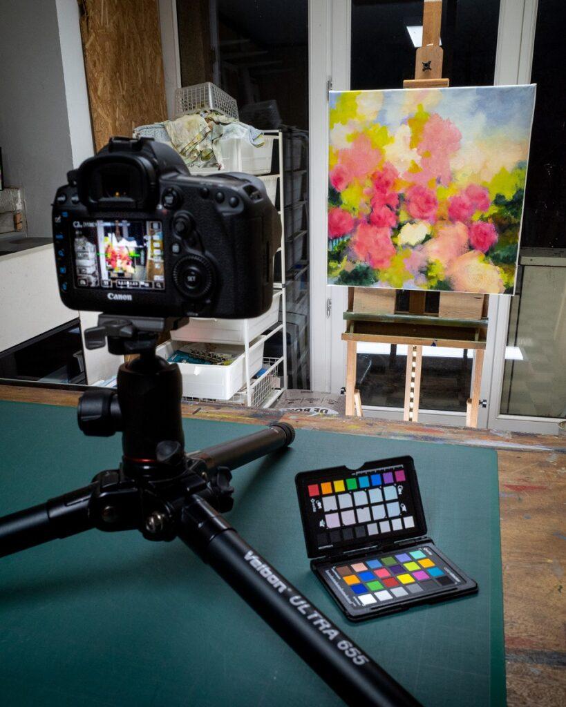Used equipment : Canon 5D mark IV, Chart X-rite Colorchecker, Velbon ultra 655